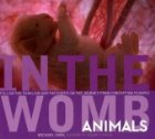 in the womb animals
